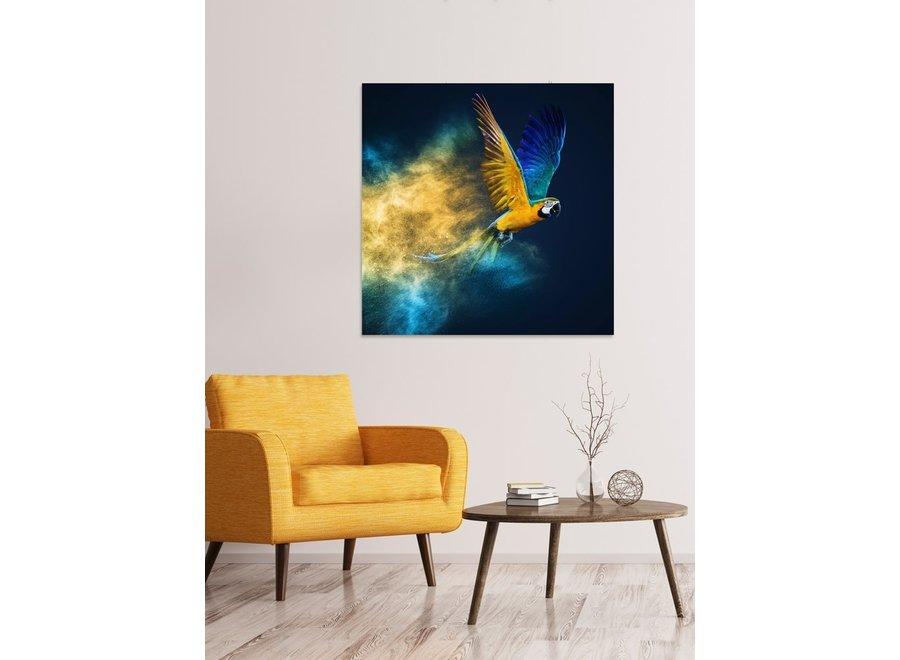 Fine Asianliving Flying Parrot Digitalprint 95x95cm Acrylic Glass