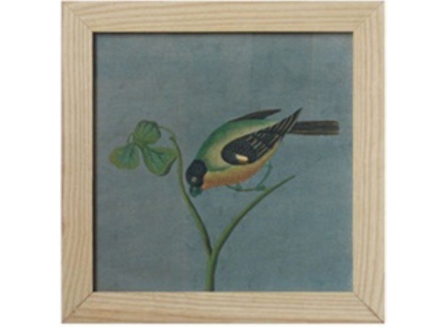 Chinese Painting with Frame Bird On Branch W42xH35cm