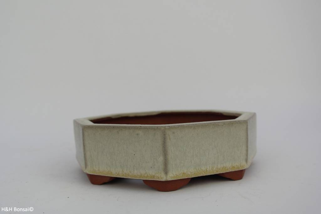Tokoname, Pot à bonsaï, no. T0160038
