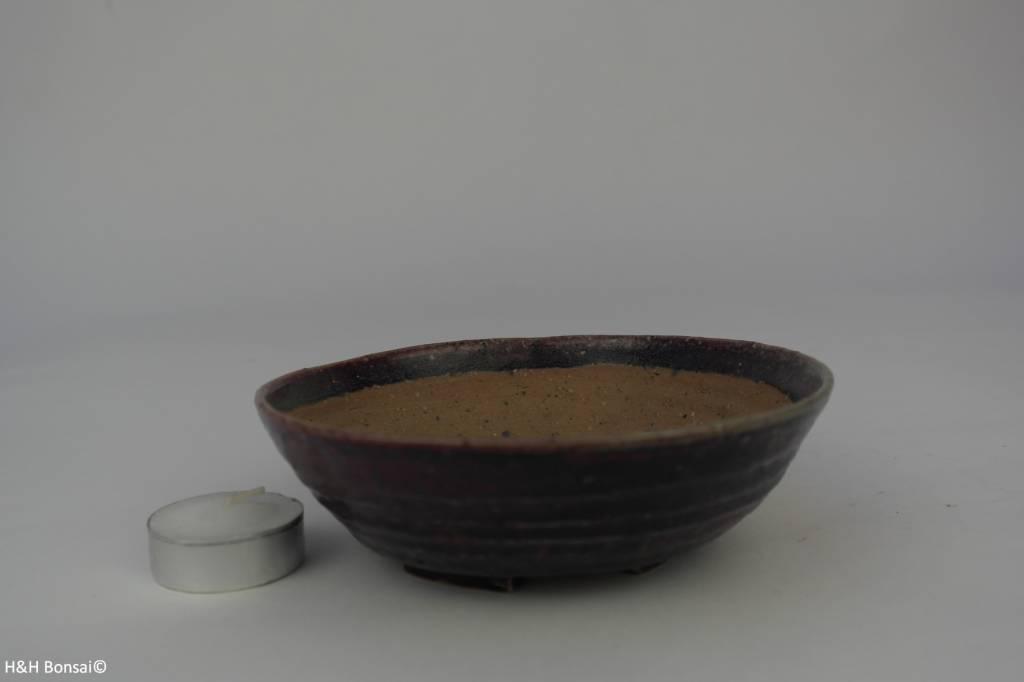 Tokoname, Pot à bonsaï, no. T0160114