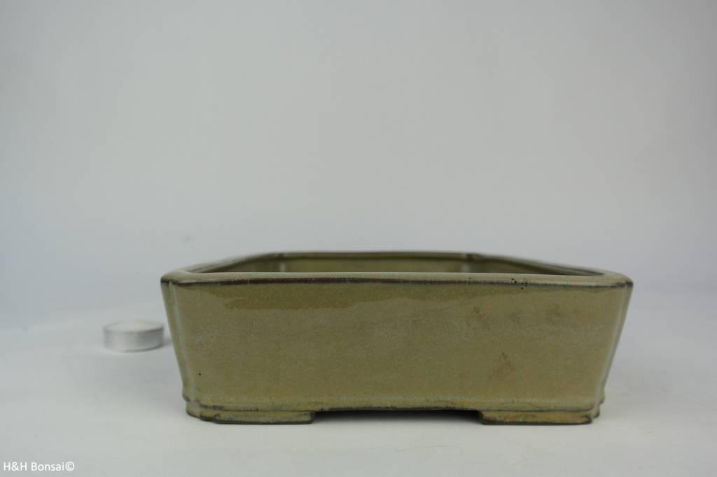 Tokoname, Pot à bonsaï, no. T0160143
