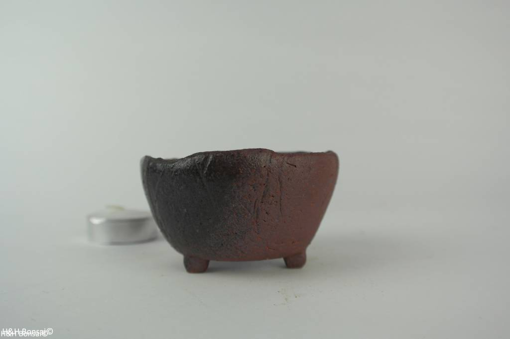 Tokoname, Pot à bonsaï, no. T0160196