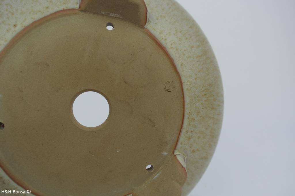 Tokoname, Bonsai Pot, no. T016004