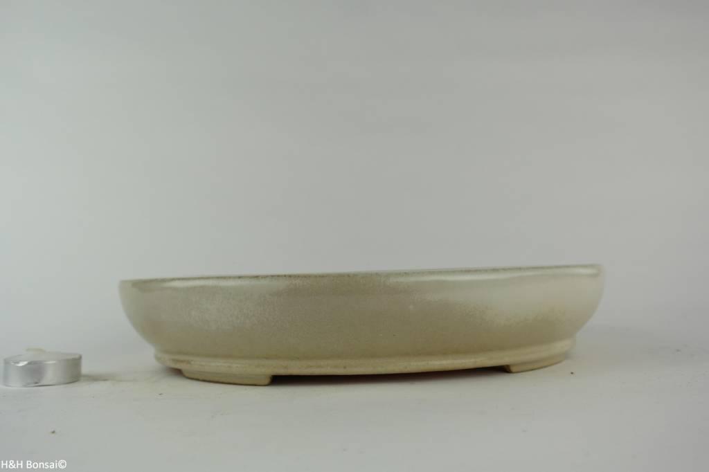 Tokoname, Bonsai Pot, no. T0160213