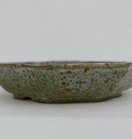 Tokoname, Bonsai Pot, no. T0160029