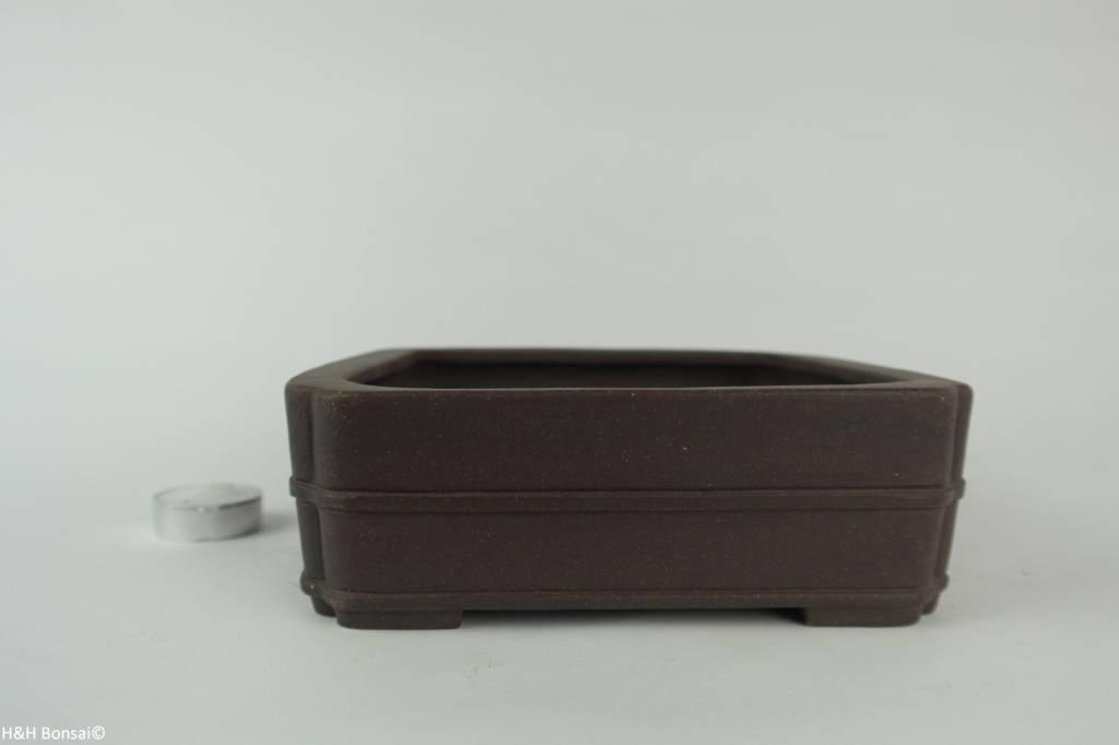 Tokoname, Bonsai Pot, no. T0160226