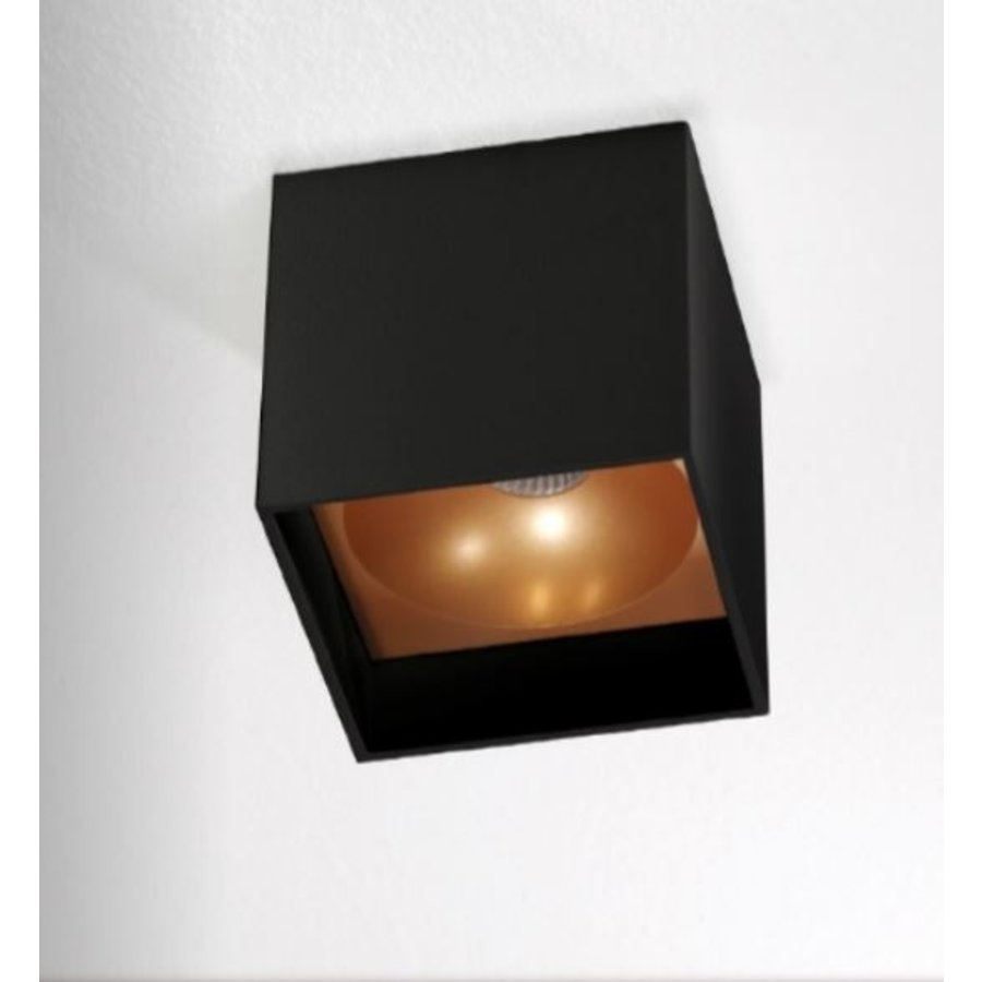 Dimbare plafondlamp Brock met geïntegreerde LED