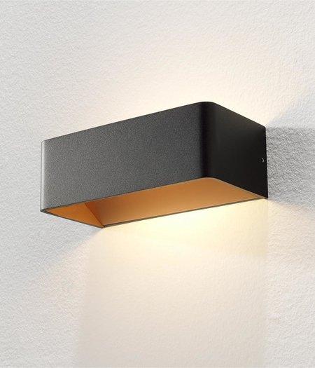 Mainz LED