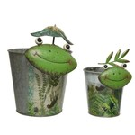 Planter iron w frog face frog