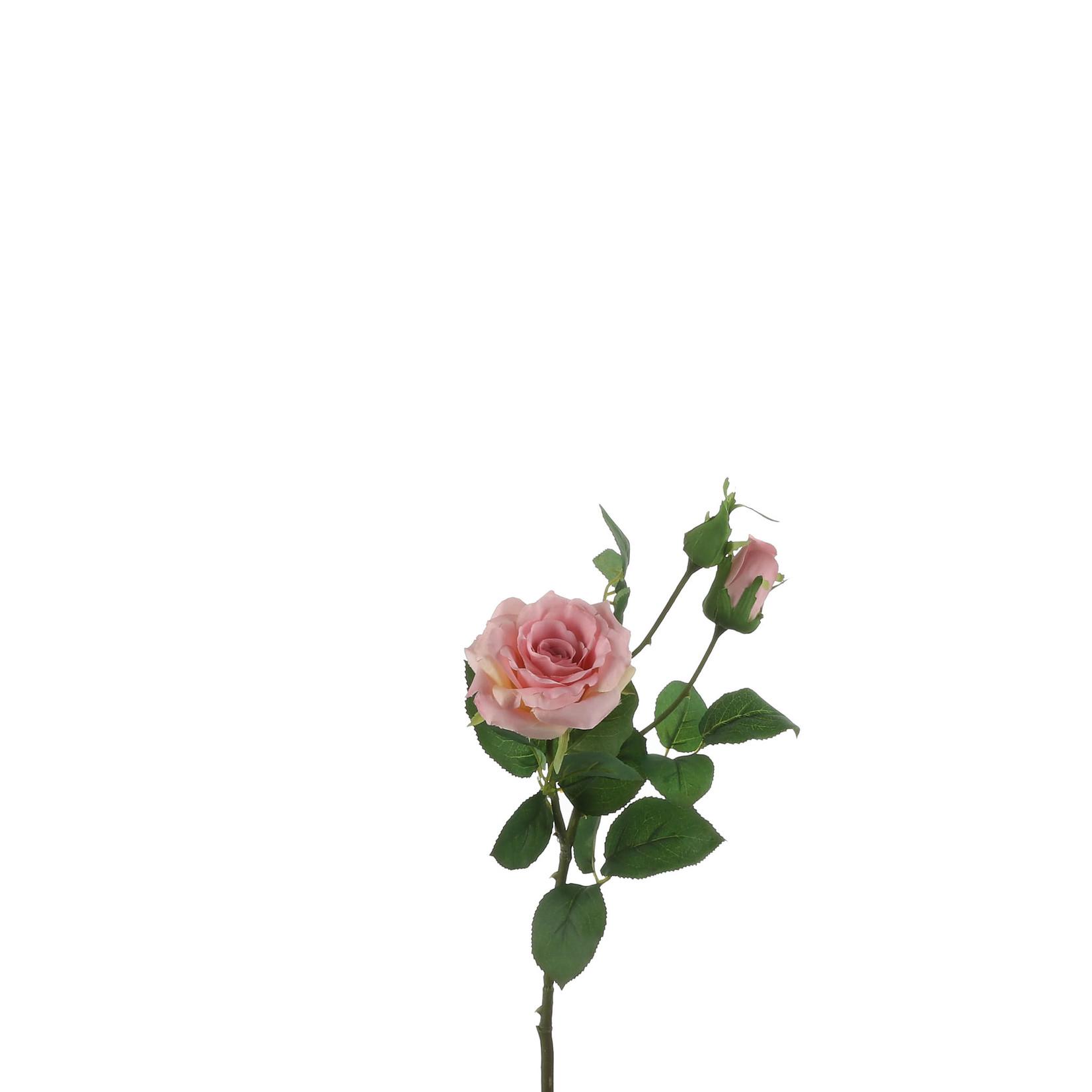 Rose pink - l58cm