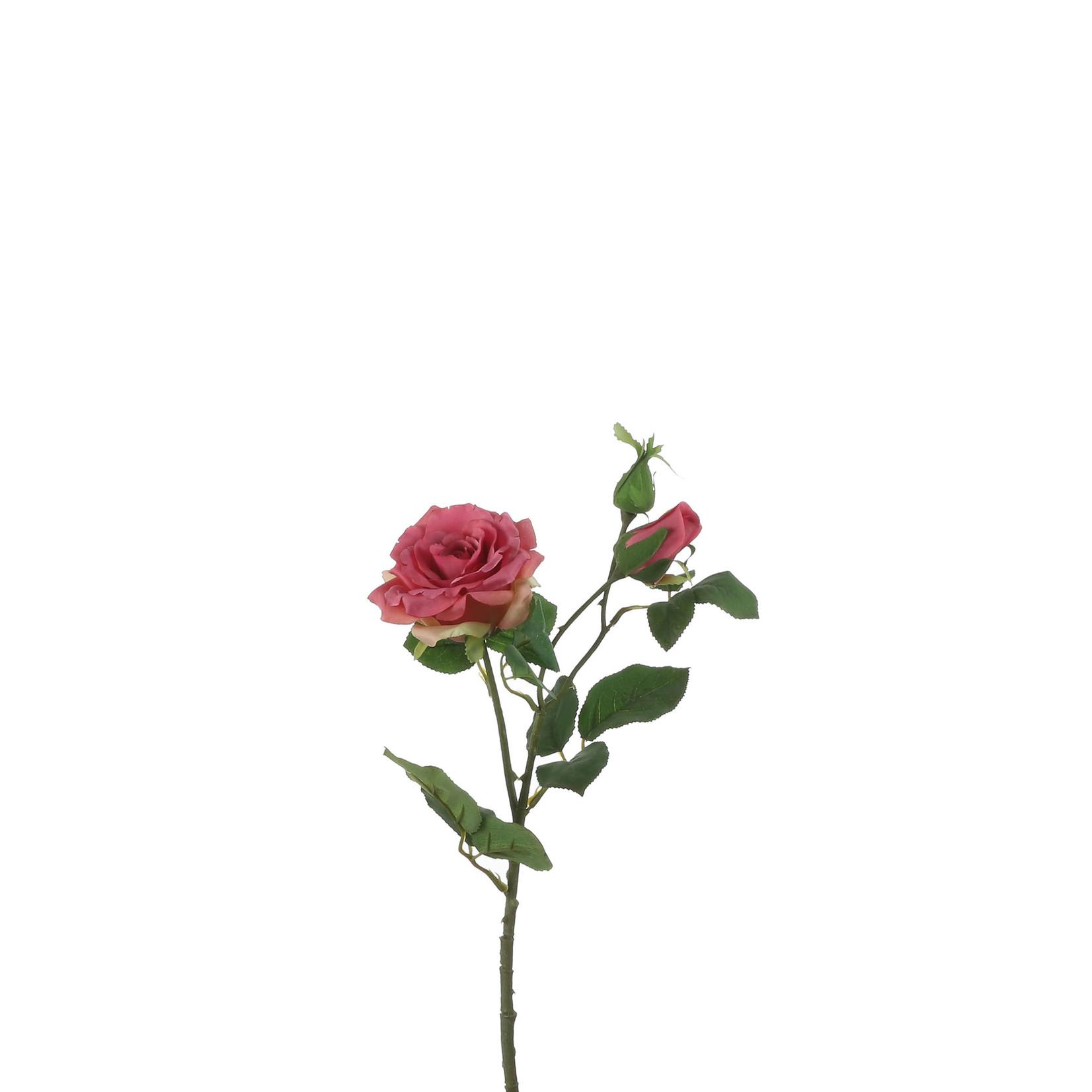 Rose fuchsia - l58cm