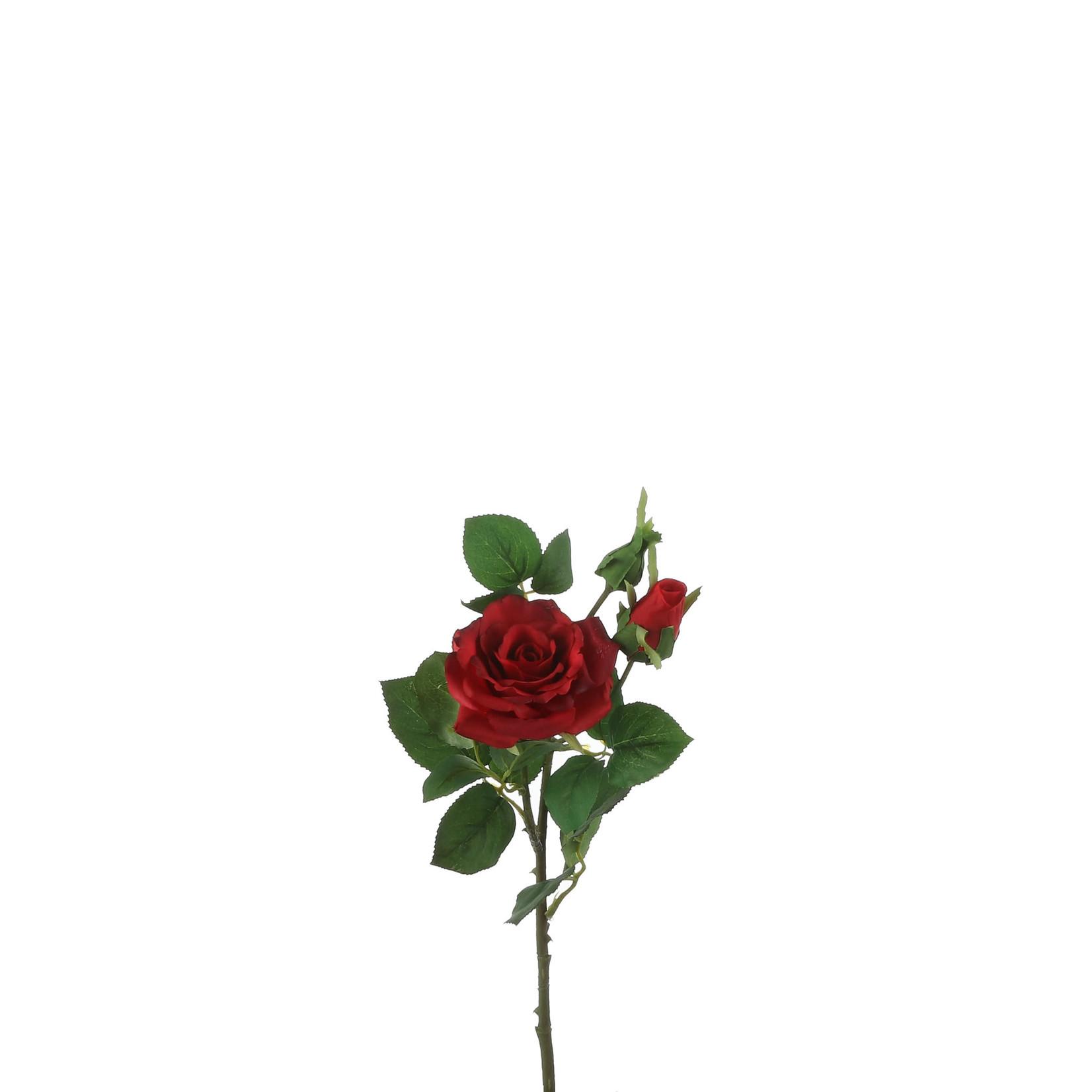 Rose red - l58cm