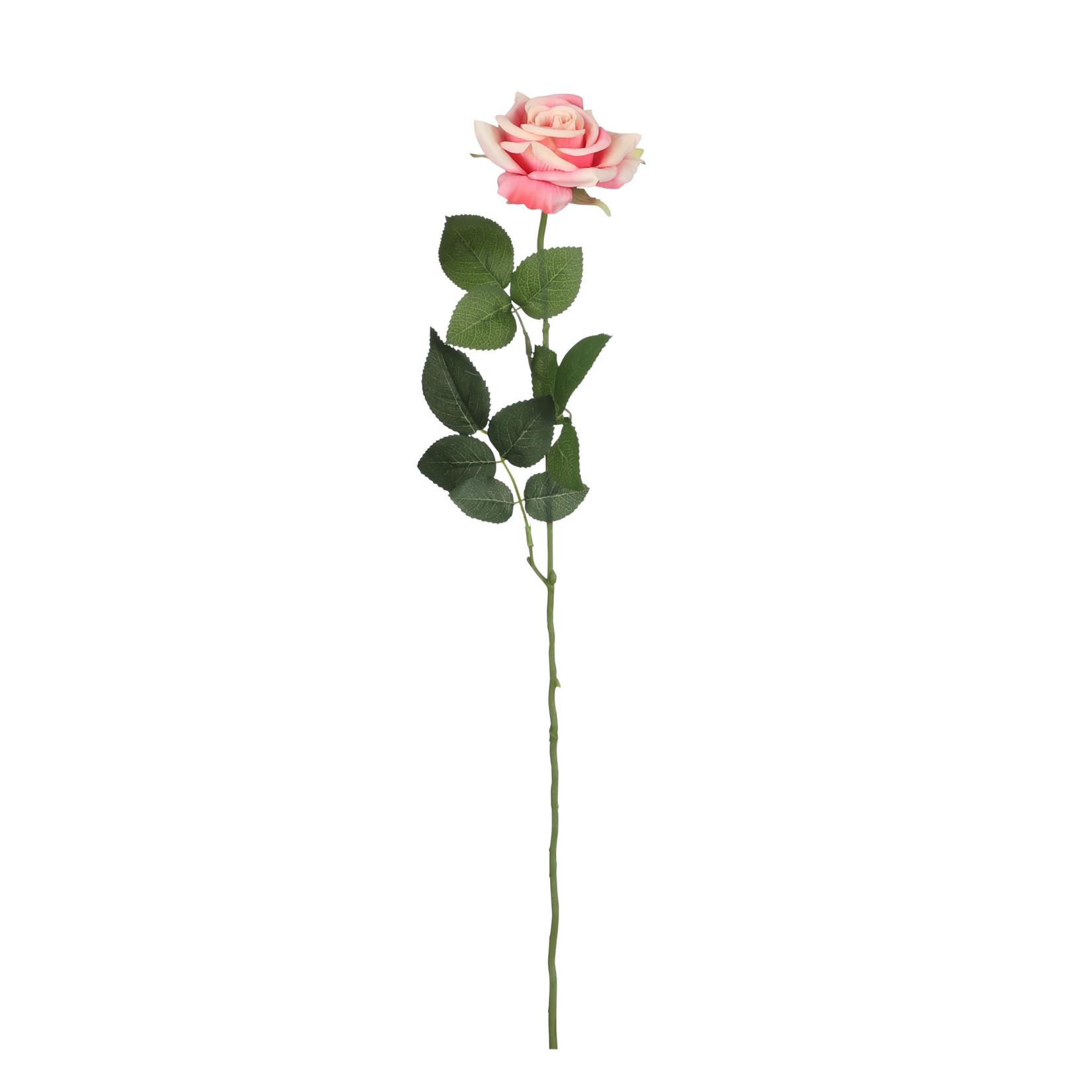 Rose dusky pink - l66cm