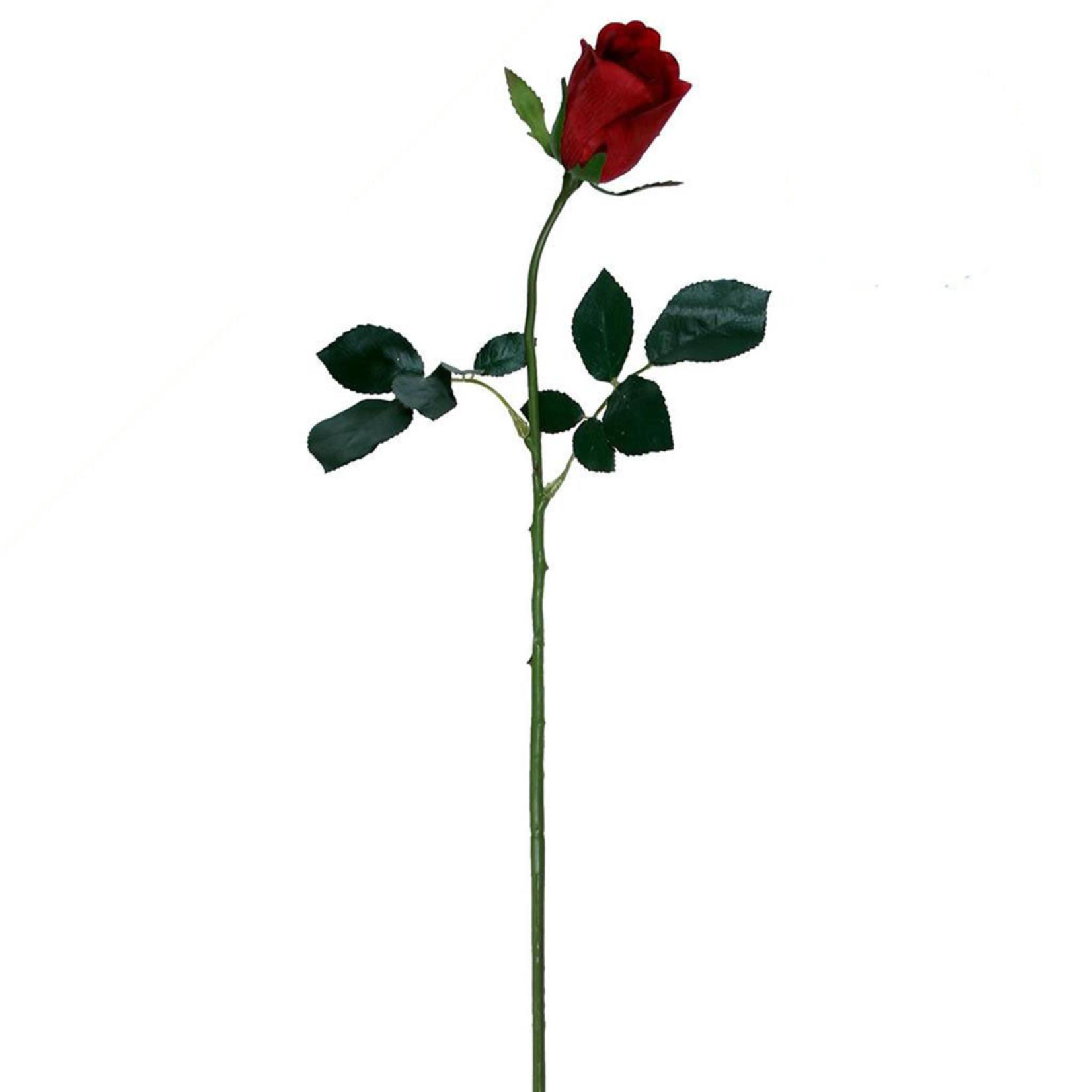 SF Rose Bud Fresh Touch Sgl w/2lvs 70cm