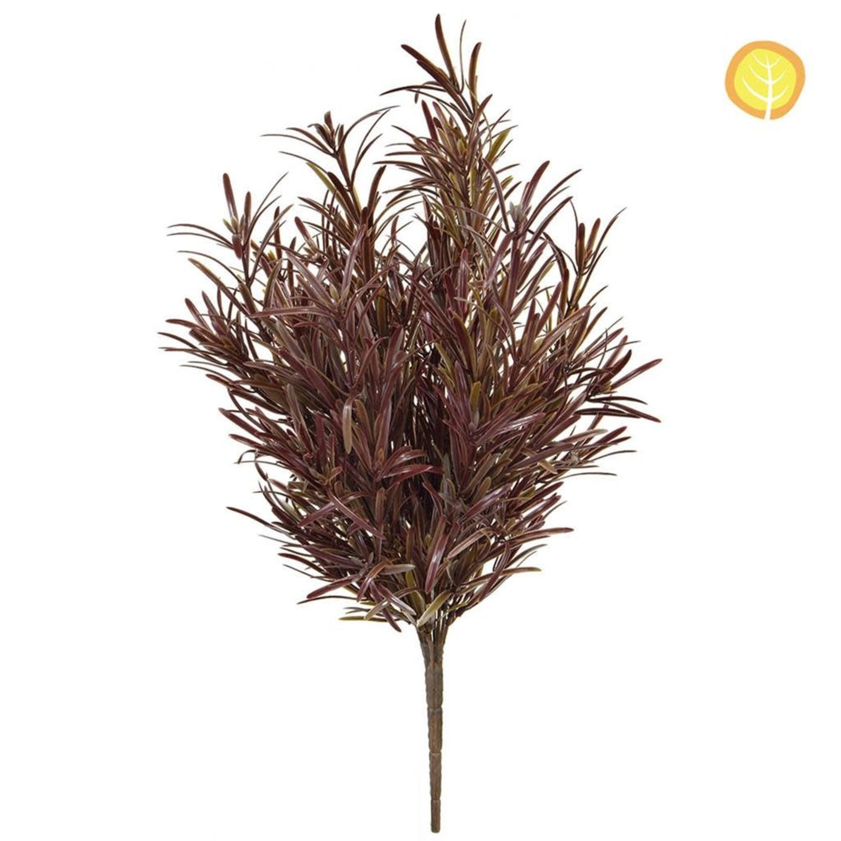 Plants Base Podocarpus Brown YF 42cm UV