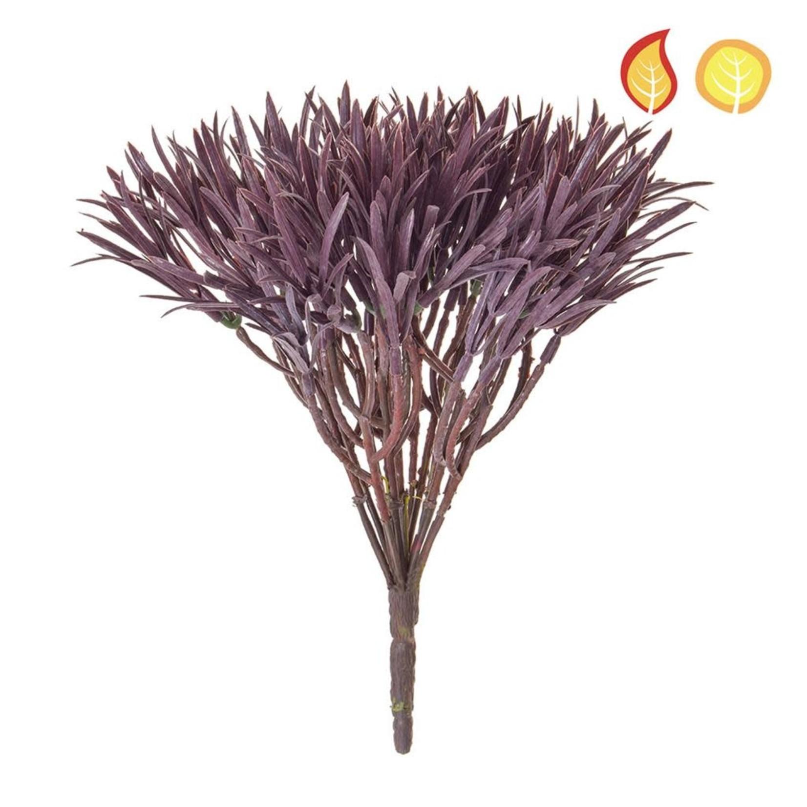 Plants Base Podocarpus Brown PI 30cm FR UV