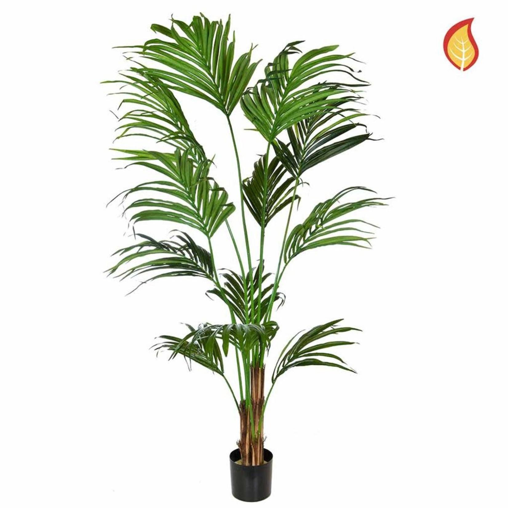 Palm Kentia SF 210cm - Fire Rated