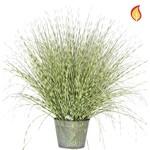 Grass Zebra Grass A in metal pot 50cm - Fire Rated