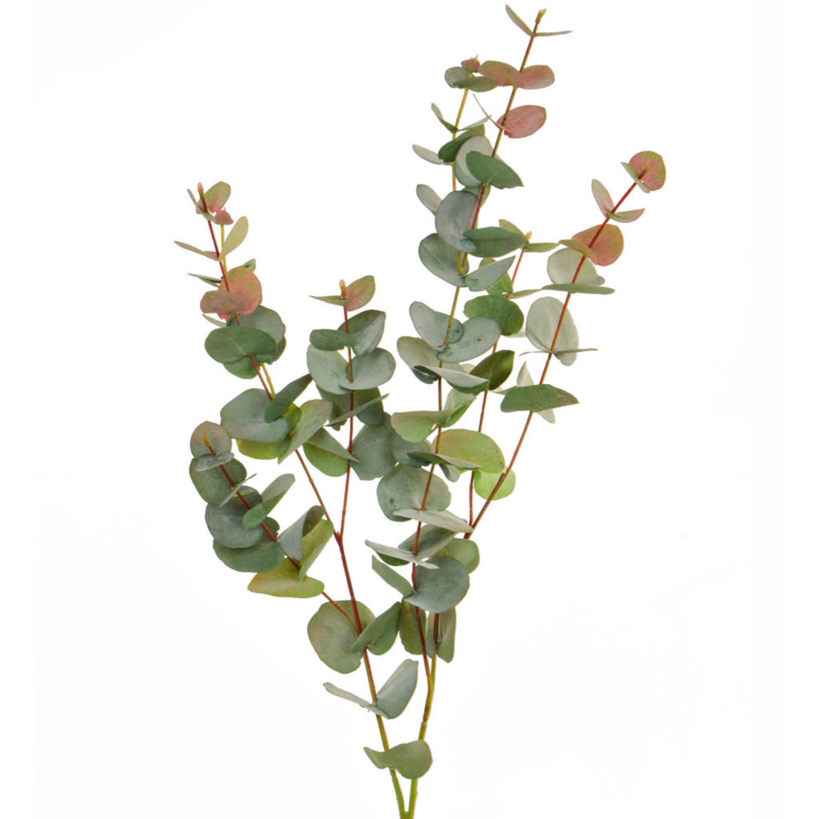 Foliage Eucalyptus RG GB 100cm