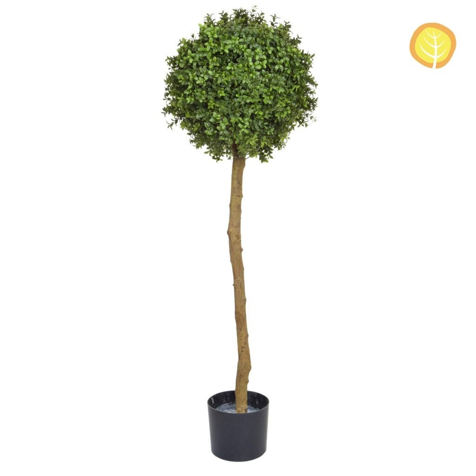Topiary Buxus Ball Tree PR 120cm  - UV Resistant