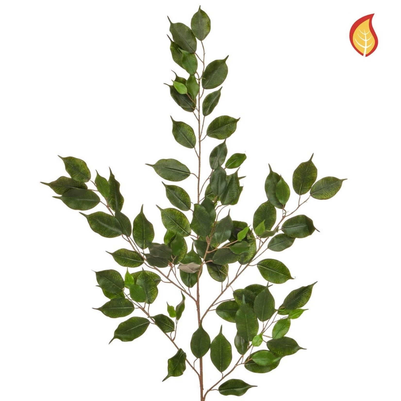 Foliage Ficus Exotica Grn 101lvs 100cm - Fire Rated