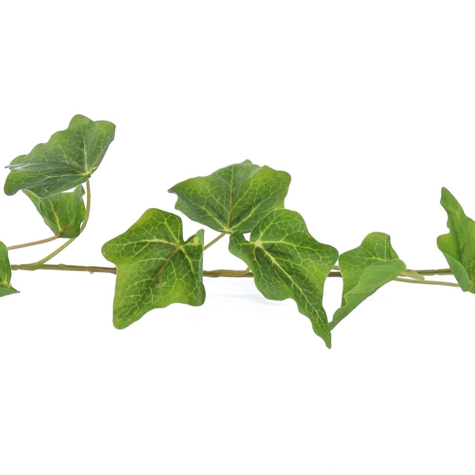 I & T English Ivy Garland Grn 180cm