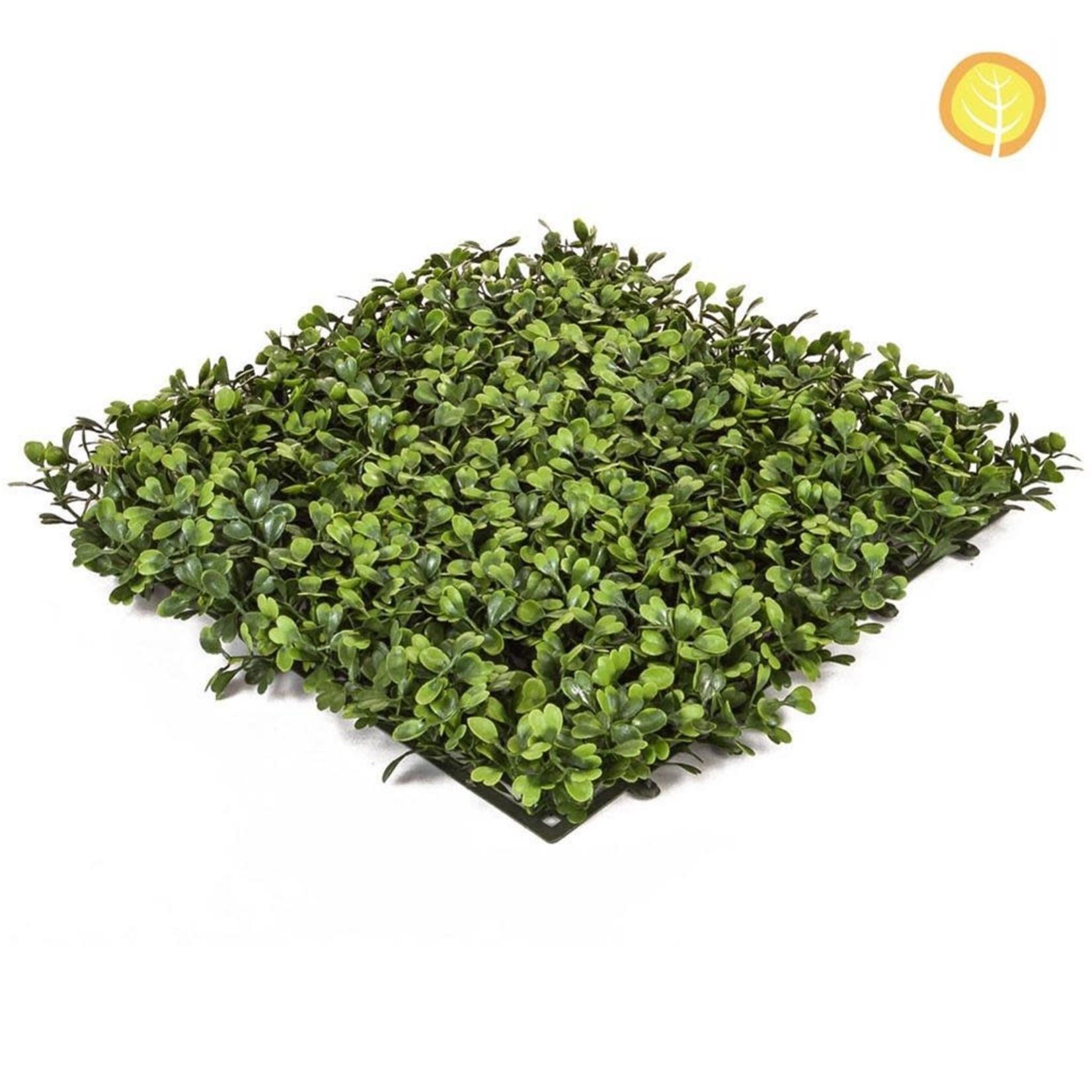 Topiary Mat Boxwood Green PI 25x25cm  - UV Resistant