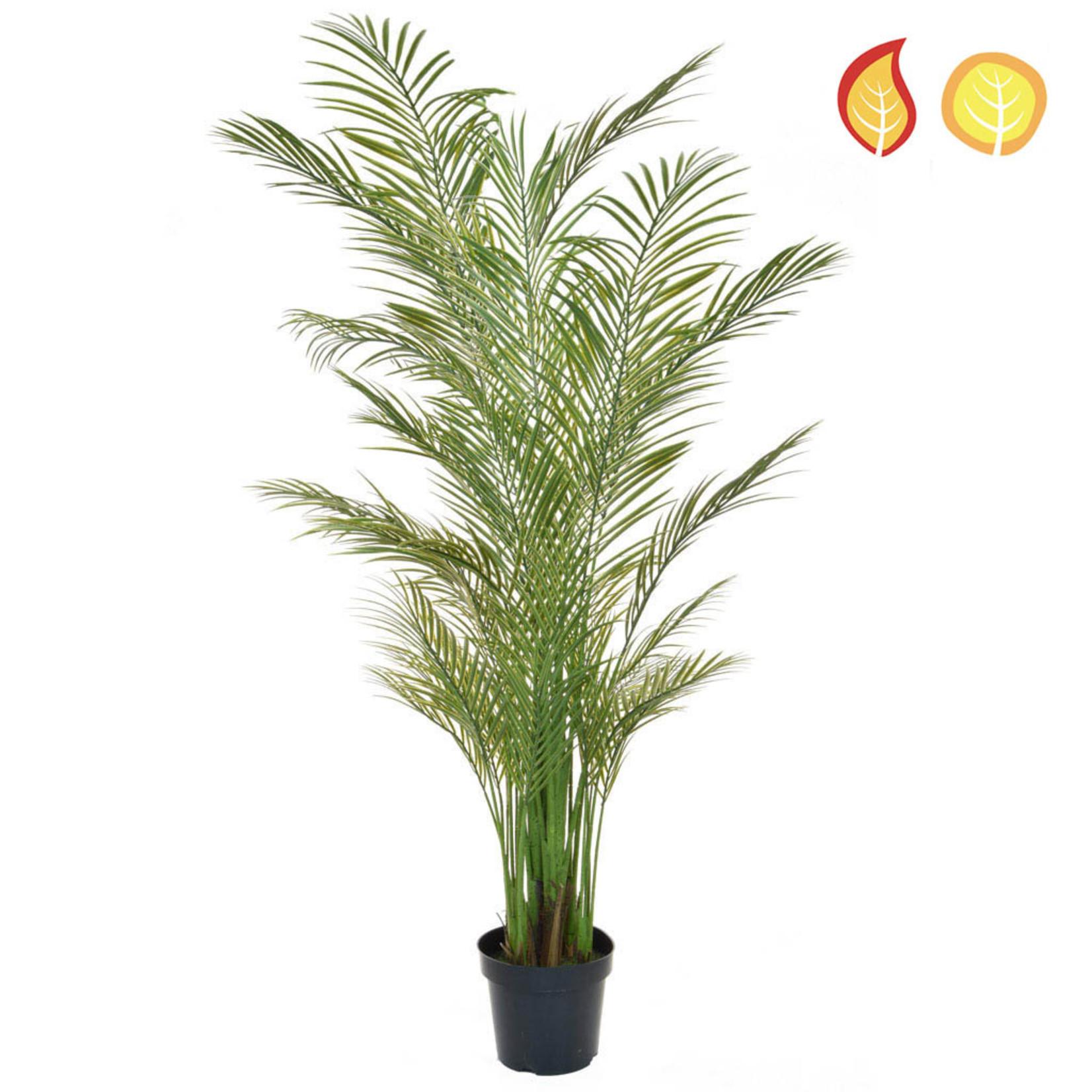 Palm Areca PI 210cm- UV Resistant & Fire Rated