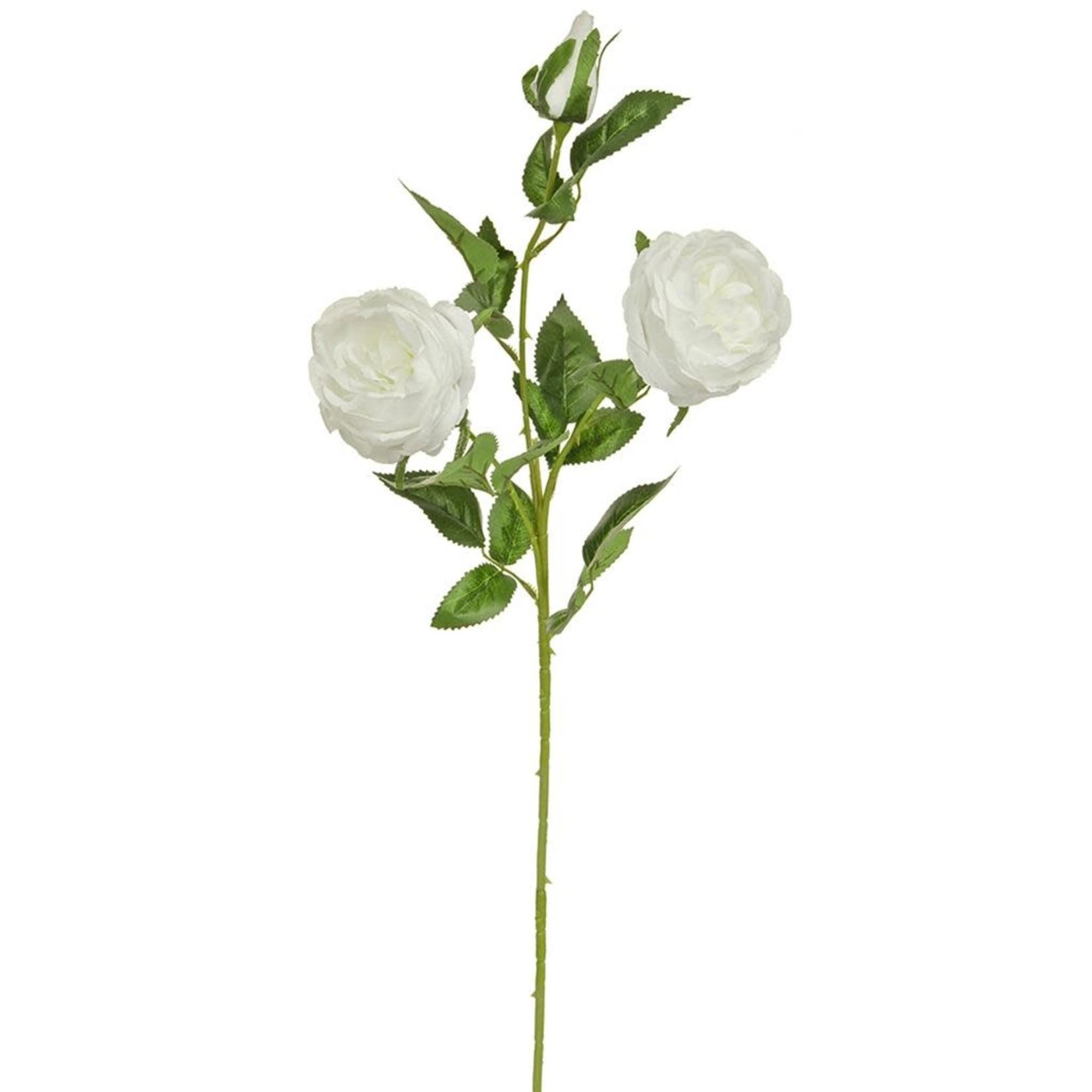 SF Rose Double White W 84cm