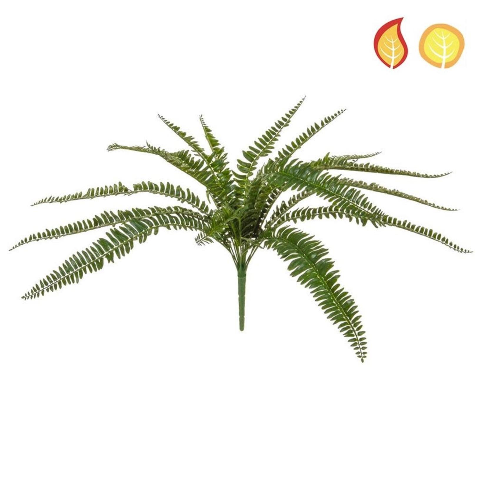 Plants Boston Fern 55cm PI - UV Resistant & Fire Rated