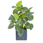PP Silver Variegated Plant in Slate Pot JM 34cm