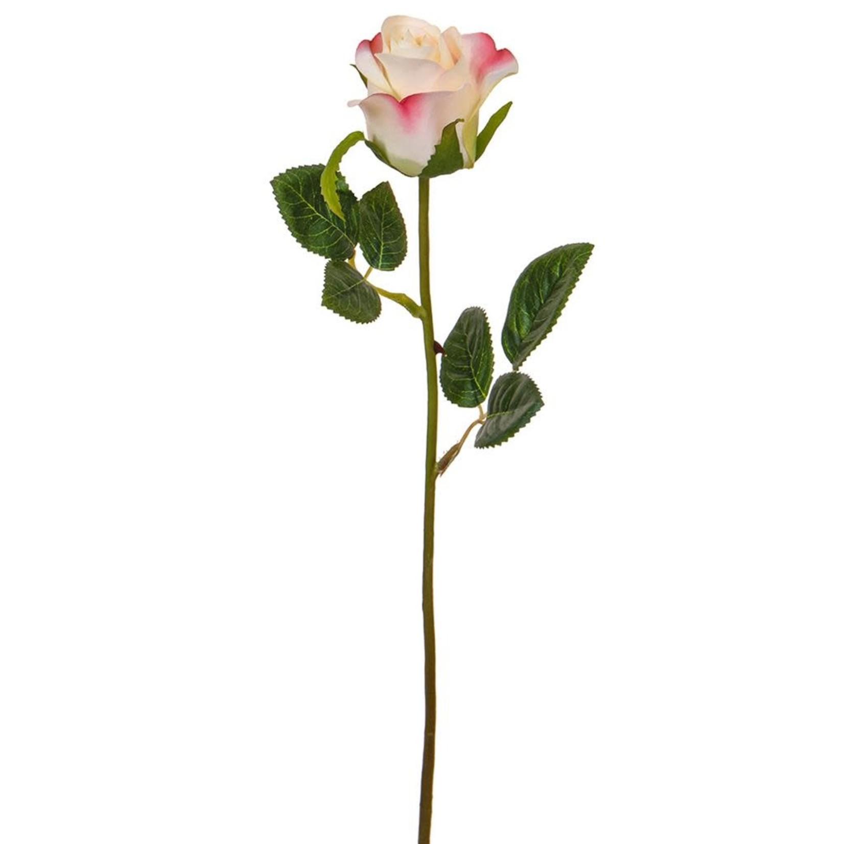 SF Rose White/Pk/Yellow XH 52cm