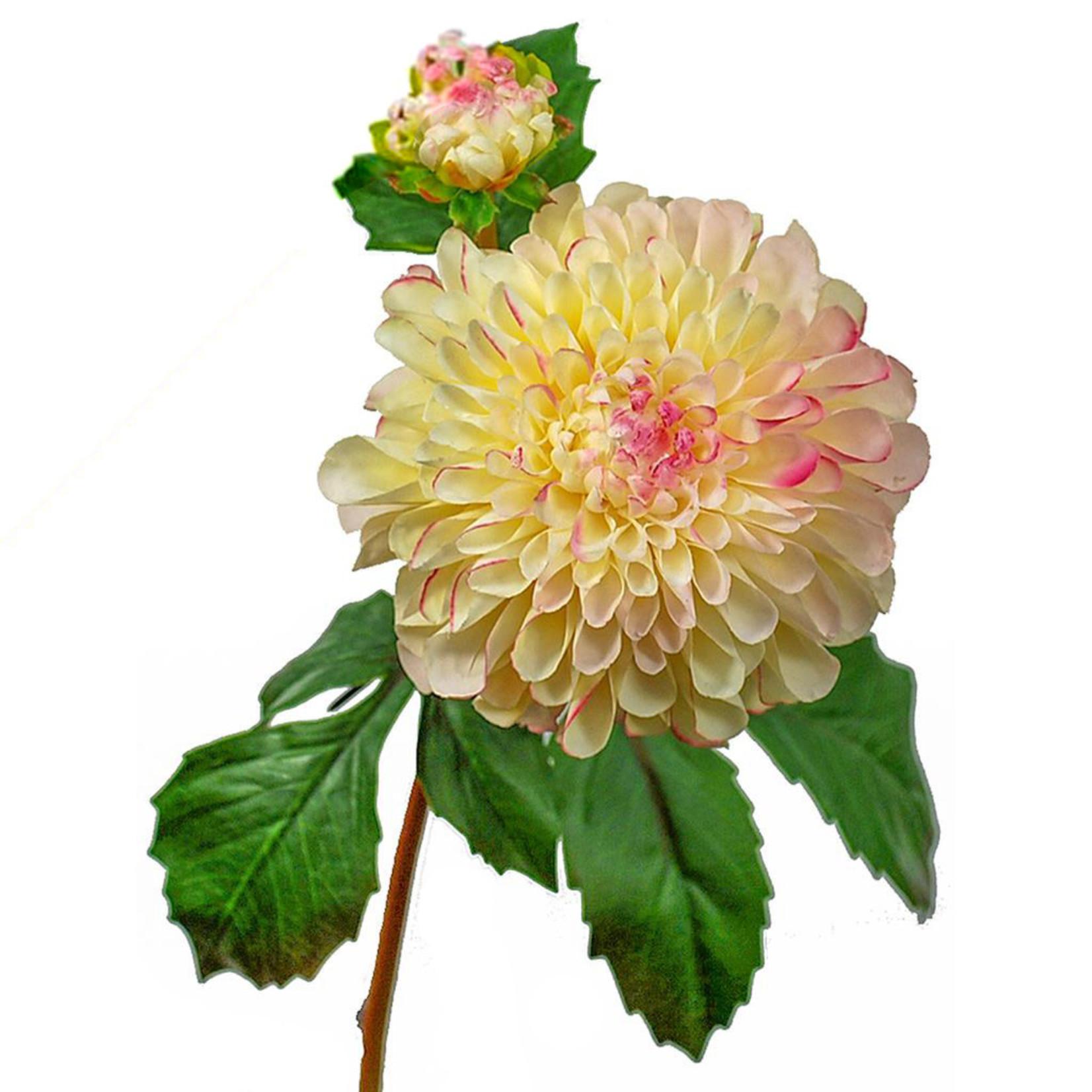 SF Dahlia Short IA Pink Cream 50cm