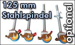 Rollen 125 mm Stahlspindel
