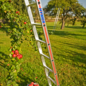 HYMER HYMER Obstbaumleiter einteilig mit ausziehbaren Stützen