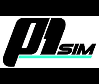 P1Sim