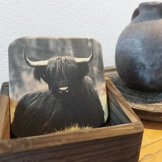 Thils Living Set onderzetters zwarte buffel ( 10 stuks ) en een houder voor de onderzetters 20106
