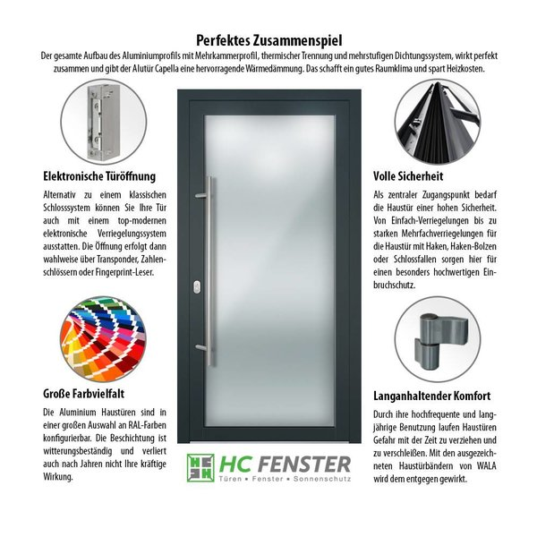 Alu-Haustür MB-Vision Plus Capella - Ral 3005 Weinrot