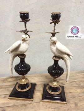 Papegaai kandelaar zwart wit