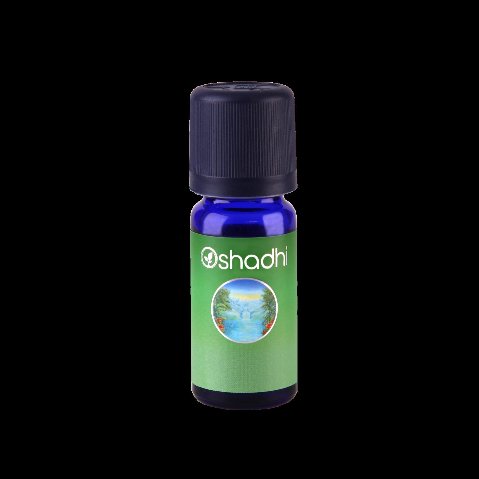 Oshadhi Synergie Helderheid Oshadhi - voor een sterke concentratie en geheugen - 10ml