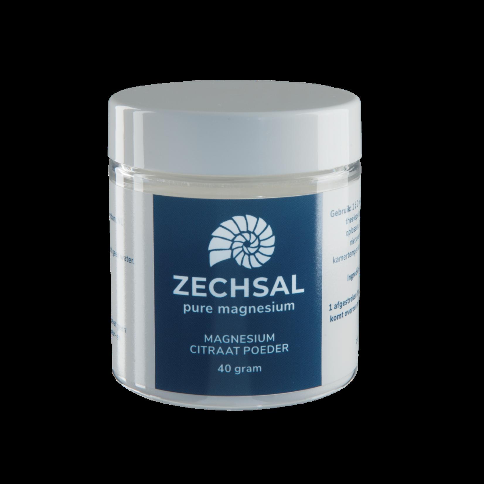 Zechsal Oraal magnesium Zechsal - magnesiumcitraat poeder MINI 40g
