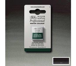 Winsor & Newton aquarelverf 1/2napje s2 perylene green 460