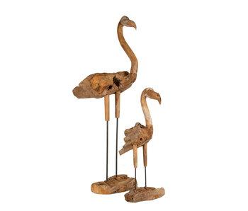 Teak Flamingo