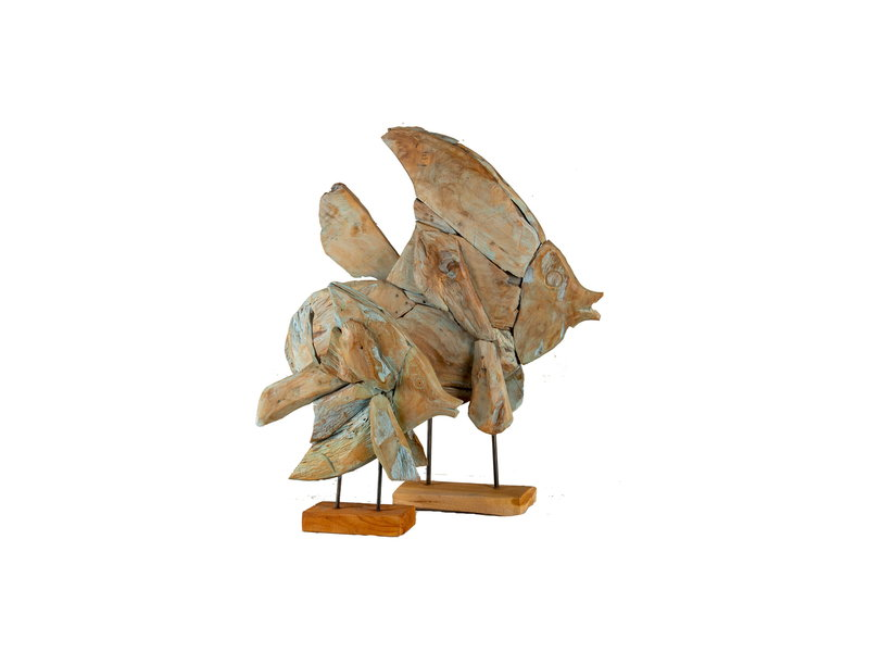 Fisch Sepat Teakholz Blau