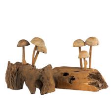 Pilz Auf Holz Klein