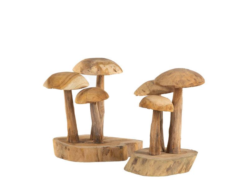 Pilz Auf Holz Groß