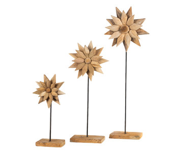 Blume Supri (3- teiliger Satz)