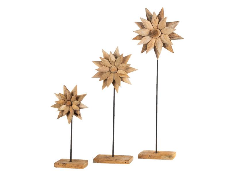 Blume Supri (3-teiliger Satz)