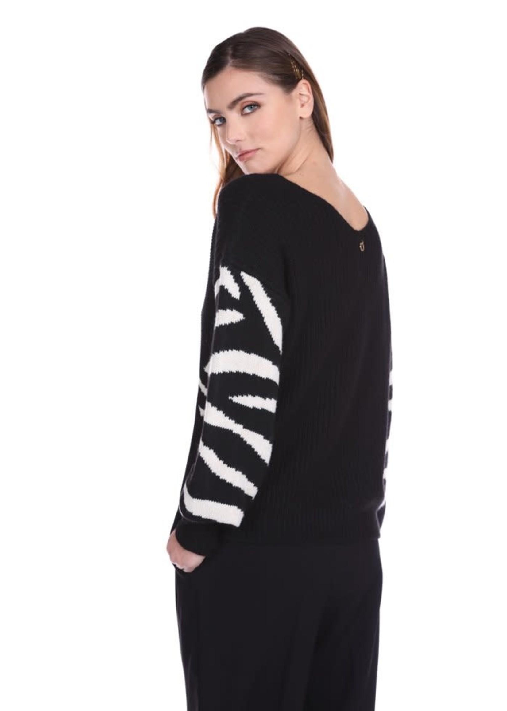 Relish SATIWA trui met lange mouwen, dubbele v-hals wijde jacquard met dierenprint en ruit
