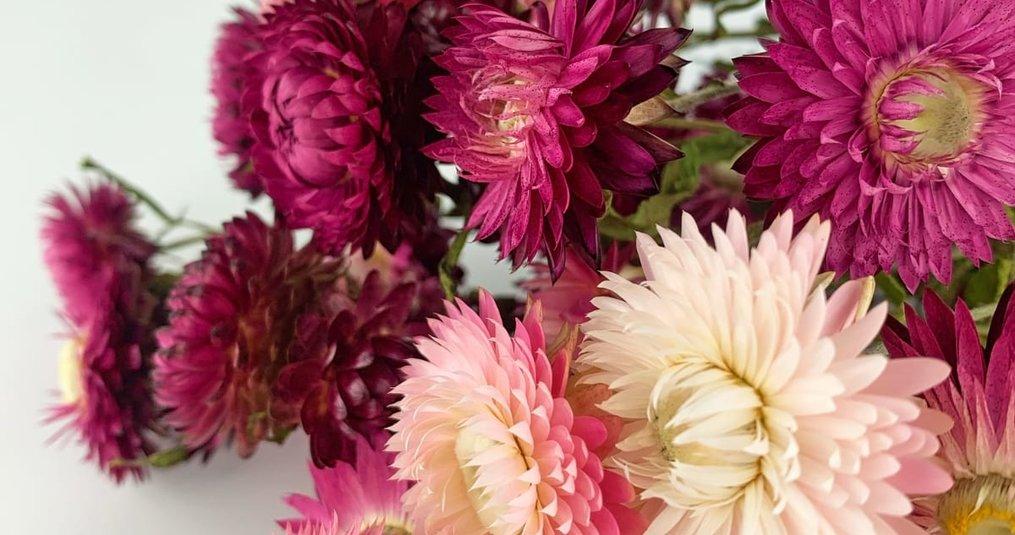 Hoe lang zijn droogbloemen houdbaar?